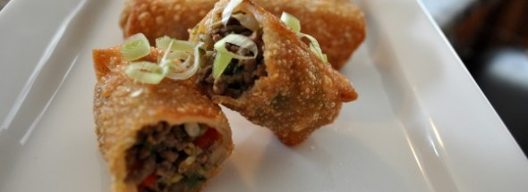 Beef Egg Rolls | Double Sided Spoon